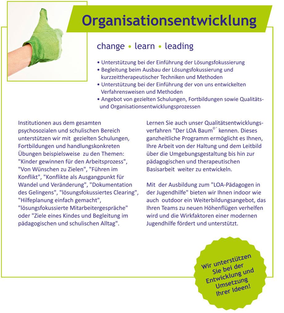 Organisationsentwicklung-einzeln_content